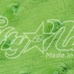 Genuine Lime Ostrich Quill Exotic Belt Swatch Sample